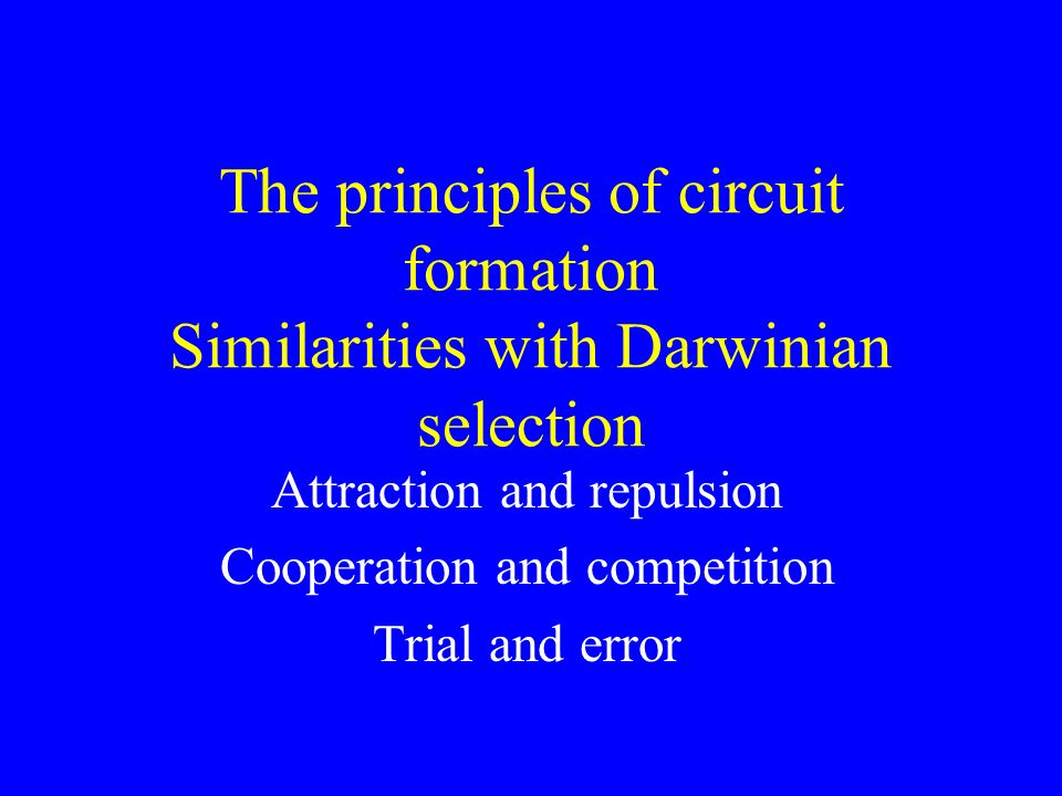 Attraction and repulsion Cooperation and competition Trial and error