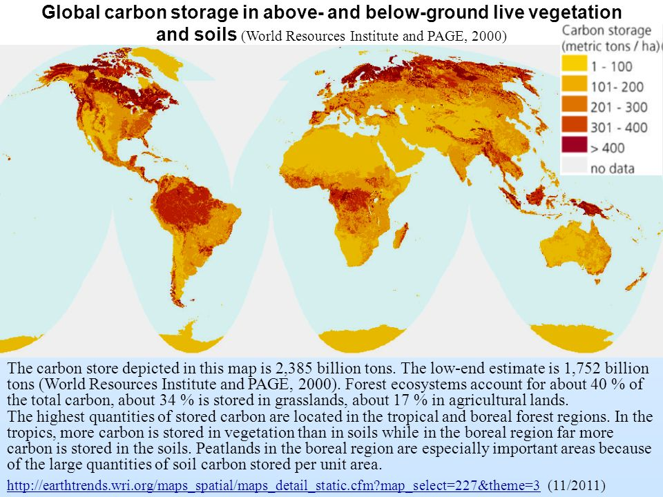 Global carbon storage in above- and below-ground live vegetation and soils (World Resources Institute and PAGE, 2000)