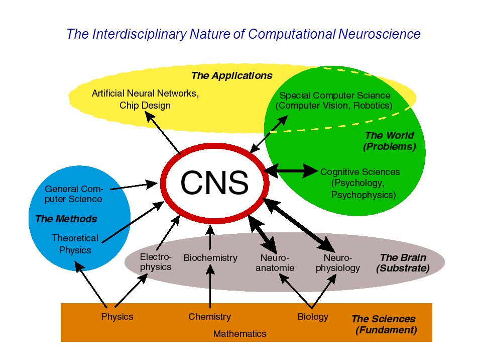 The Interdisciplinary Nature of Computational Neuroscience