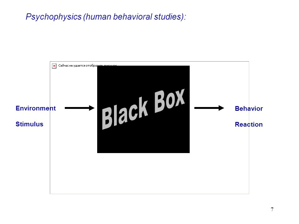 Psychophysics (human behavioral studies):