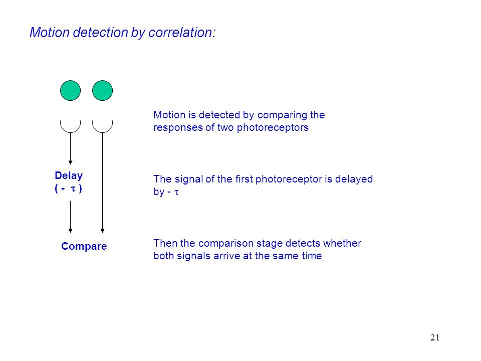 Motion detection by correlation: