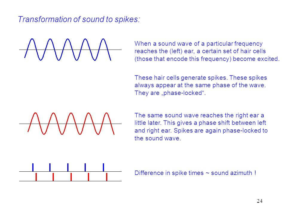 Transformation of sound to spikes:
