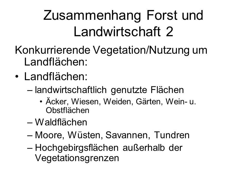 Zusammenhang Forst und Landwirtschaft 2