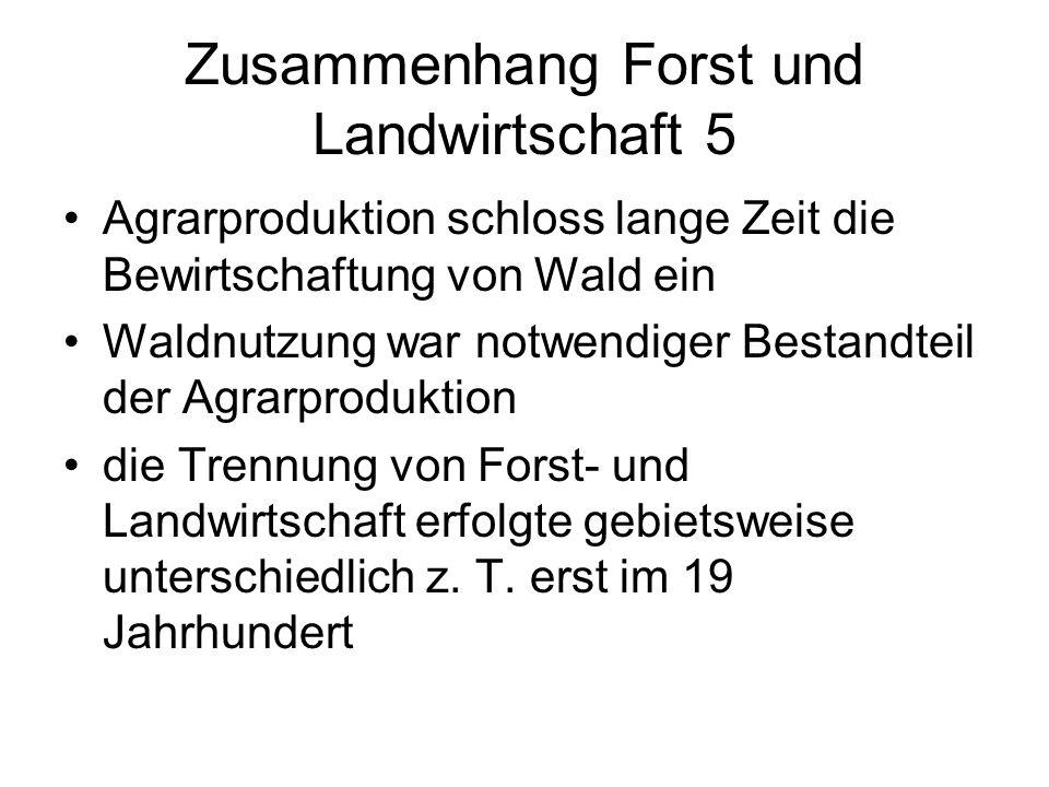 Zusammenhang Forst und Landwirtschaft 5