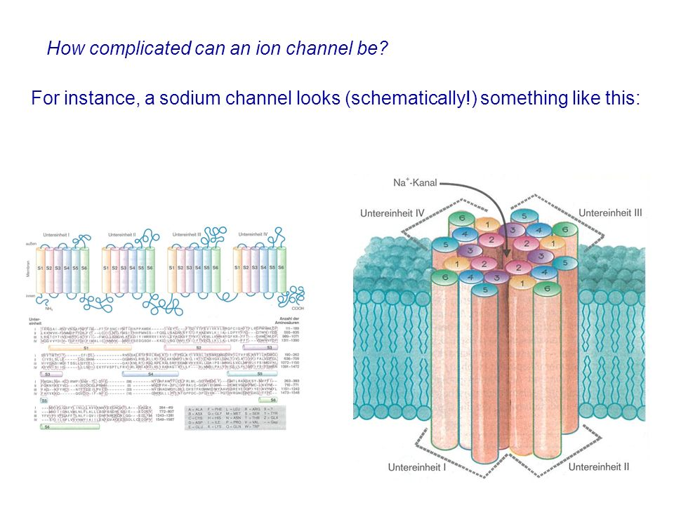How complicated can an ion channel be