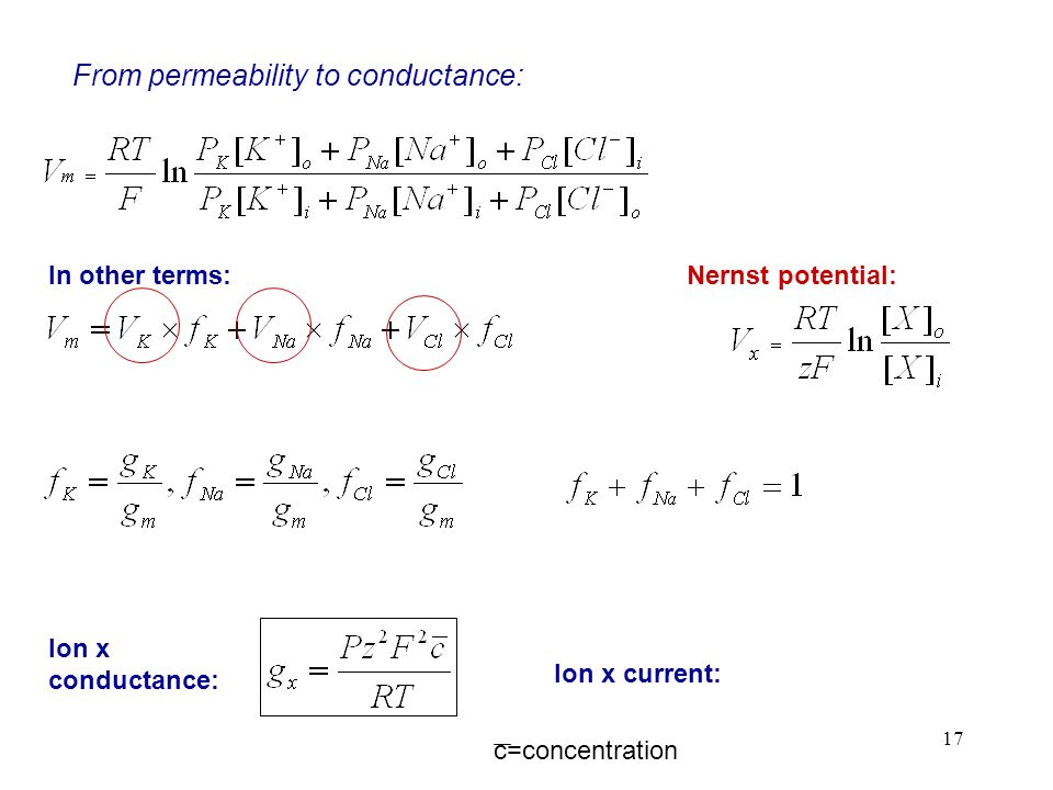 From permeability to conductance: