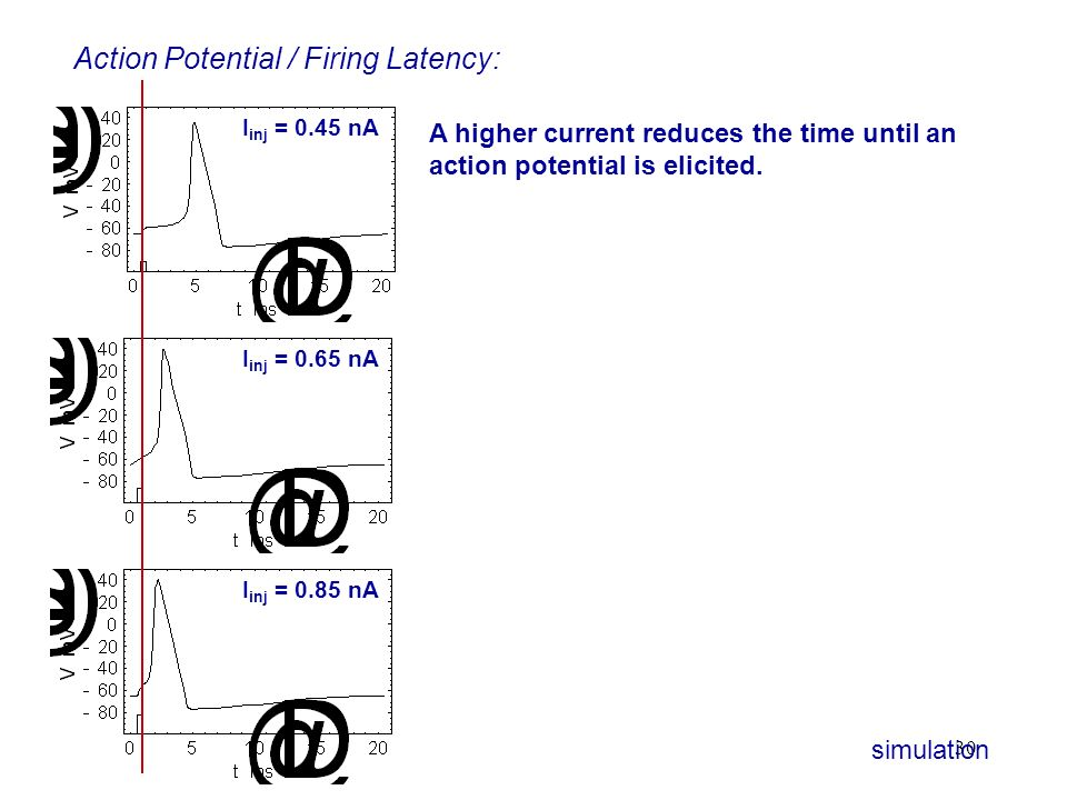 Action Potential / Firing Latency: