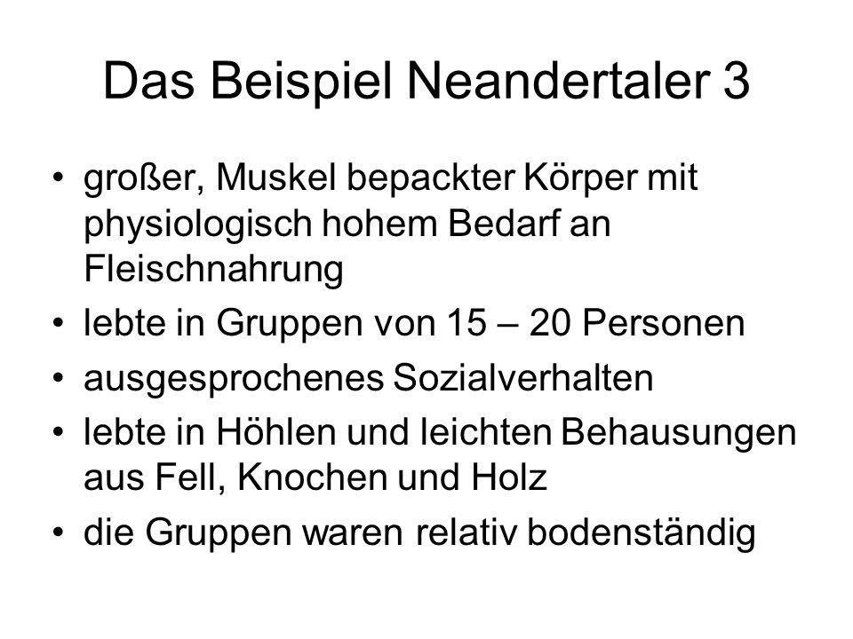 Das Beispiel Neandertaler 3