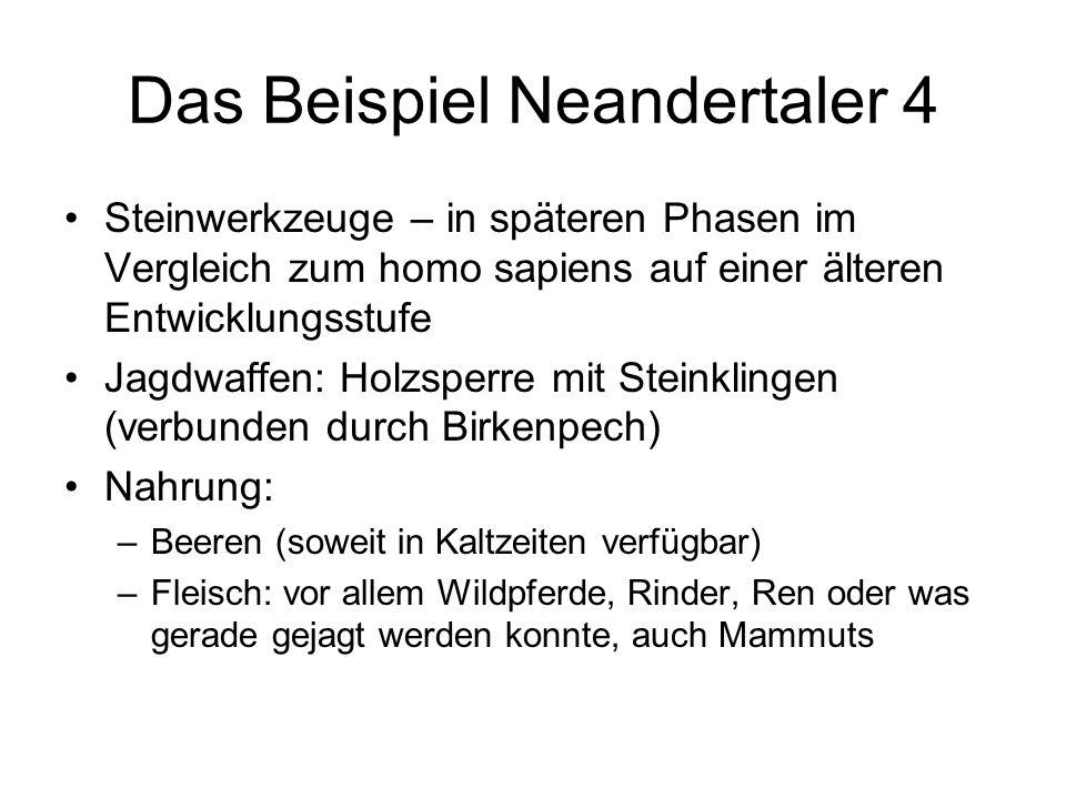 Das Beispiel Neandertaler 4