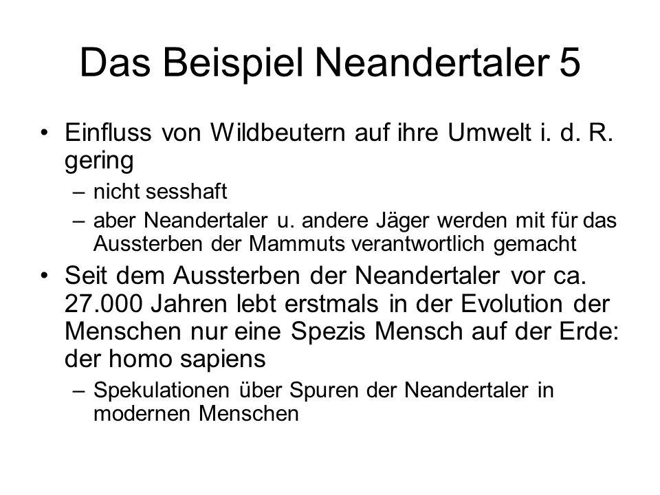 Das Beispiel Neandertaler 5