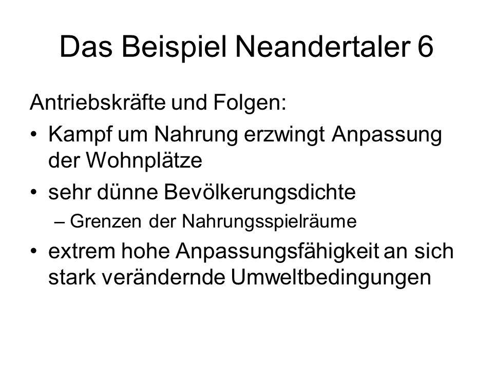 Das Beispiel Neandertaler 6