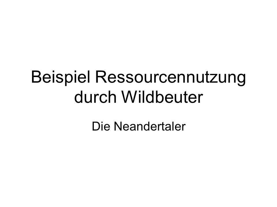 Beispiel Ressourcennutzung durch Wildbeuter