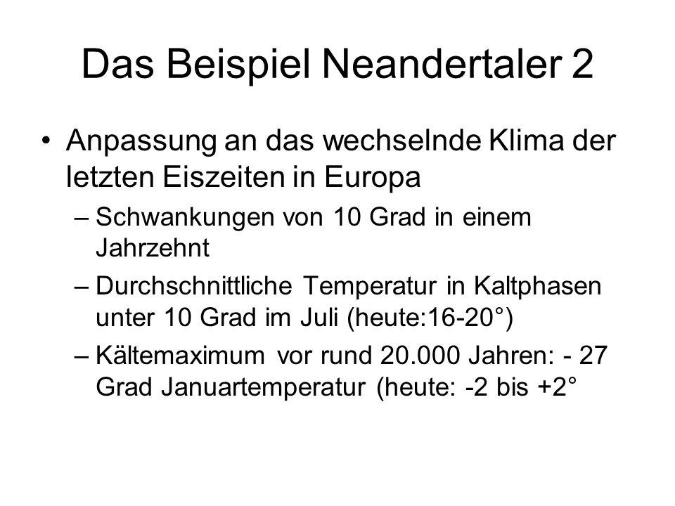 Das Beispiel Neandertaler 2