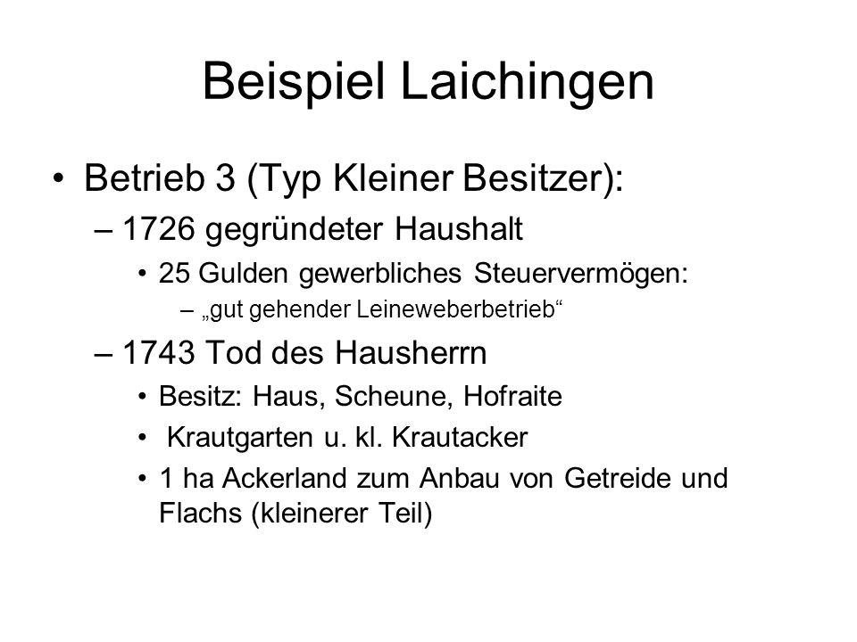 Beispiel Laichingen Betrieb 3 (Typ Kleiner Besitzer):