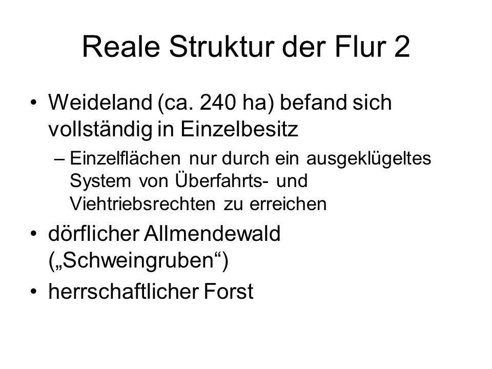 Reale Struktur der Flur 2