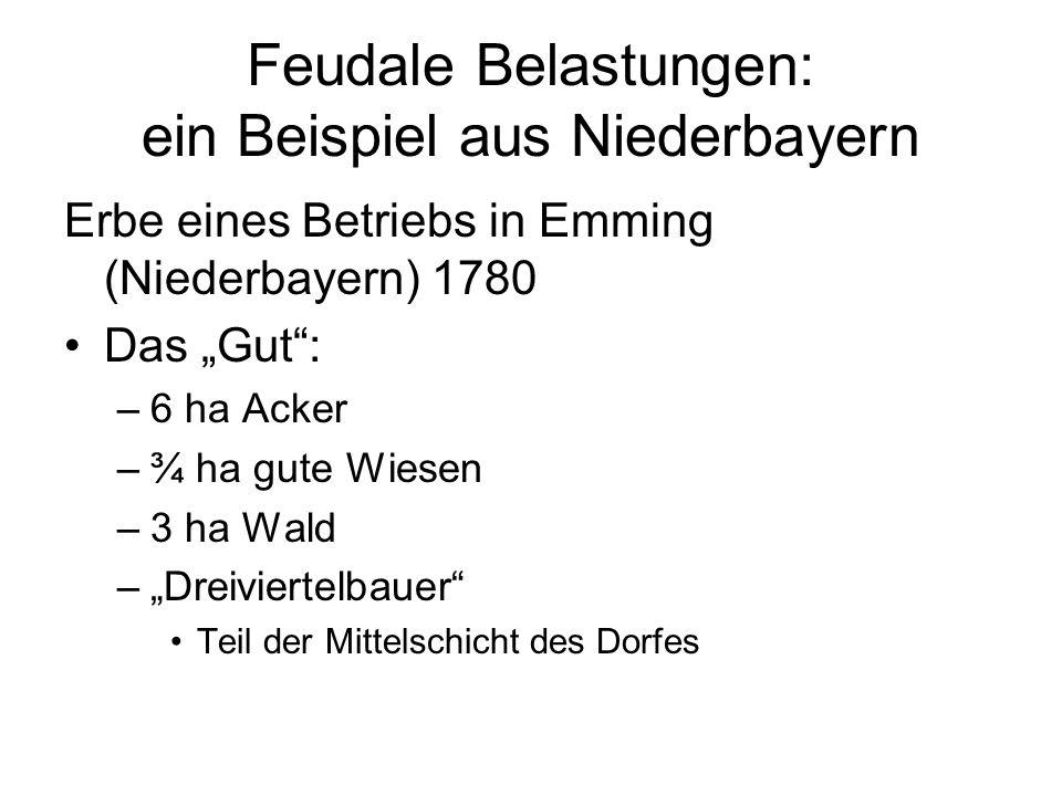Feudale Belastungen: ein Beispiel aus Niederbayern