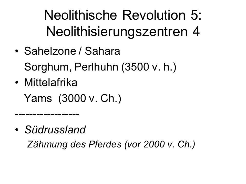 Neolithische Revolution 5: Neolithisierungszentren 4