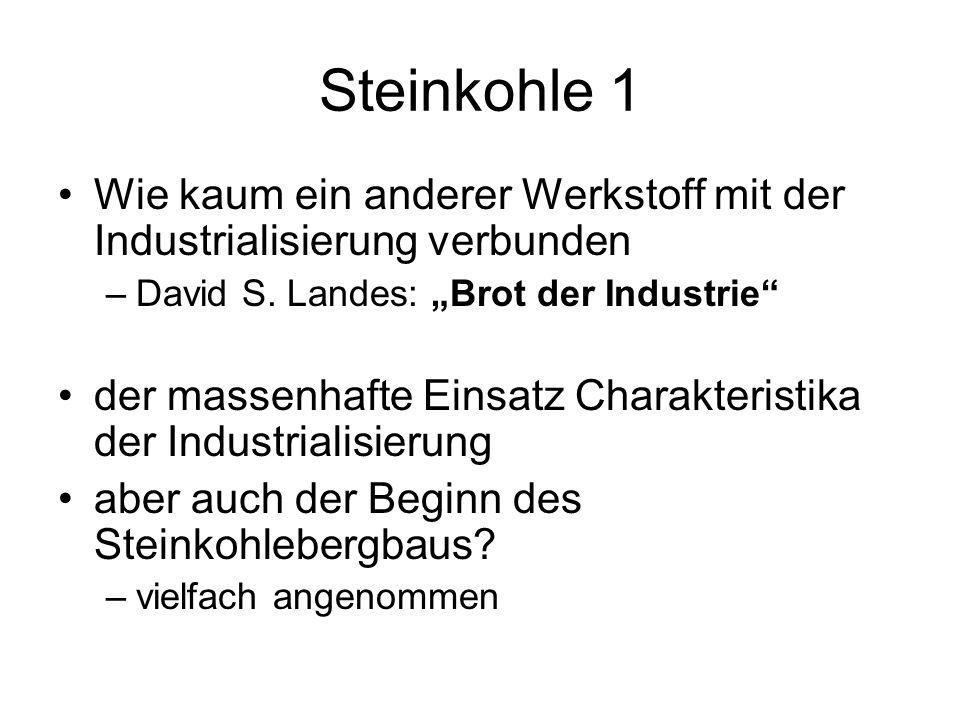 """Steinkohle 1 Wie kaum ein anderer Werkstoff mit der Industrialisierung verbunden. David S. Landes: """"Brot der Industrie"""