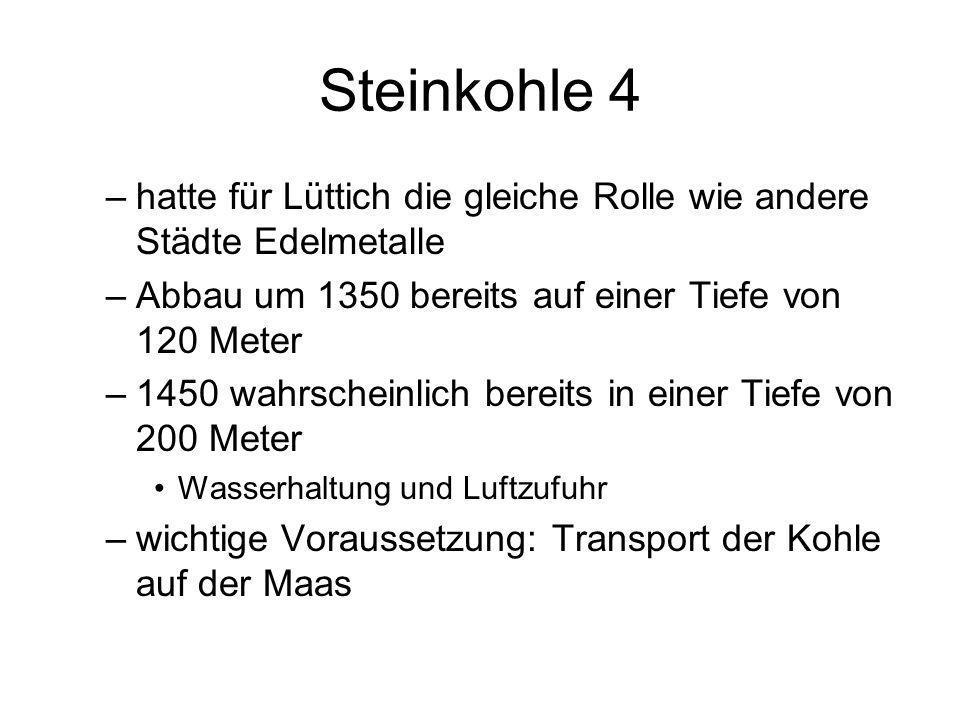Steinkohle 4 hatte für Lüttich die gleiche Rolle wie andere Städte Edelmetalle. Abbau um 1350 bereits auf einer Tiefe von 120 Meter.