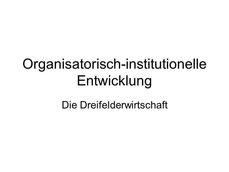 Organisatorisch-institutionelle Entwicklung