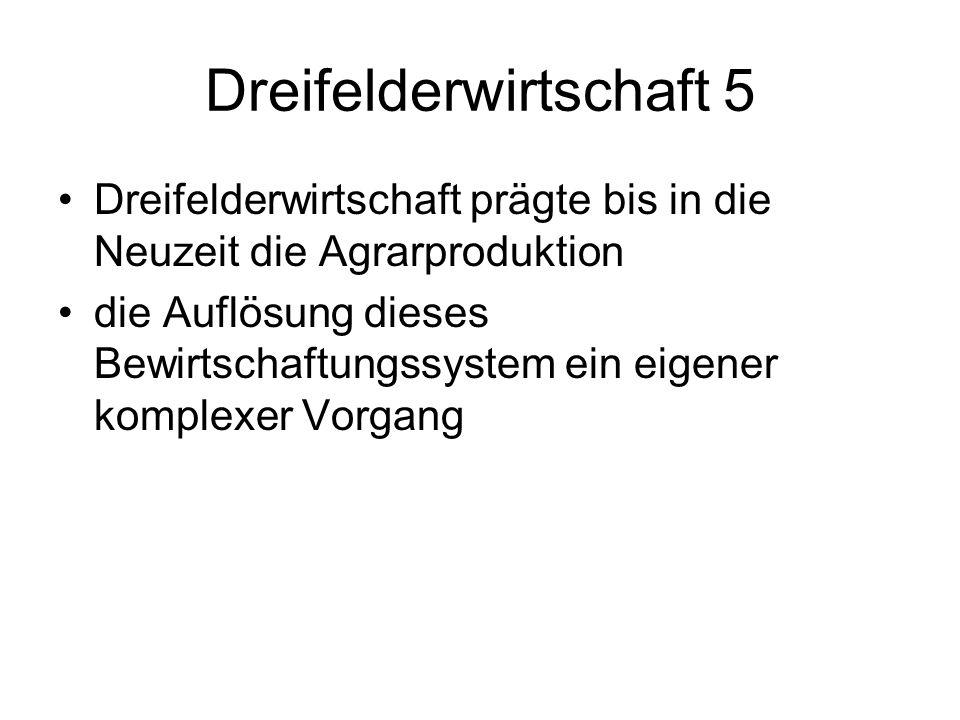 Dreifelderwirtschaft 5