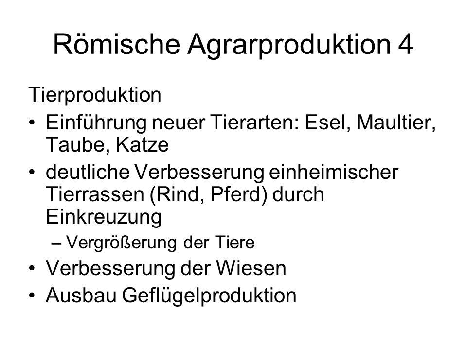 Römische Agrarproduktion 4