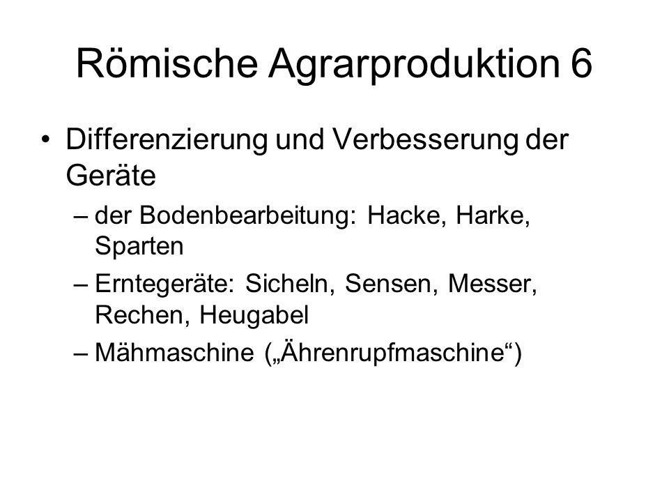 Römische Agrarproduktion 6