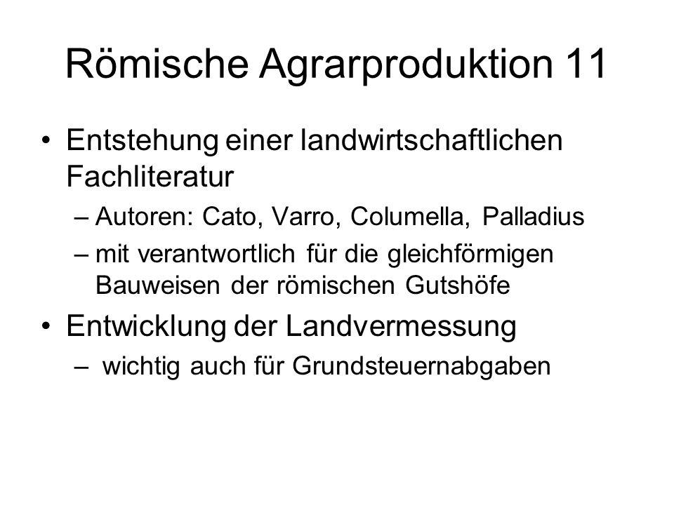 Römische Agrarproduktion 11