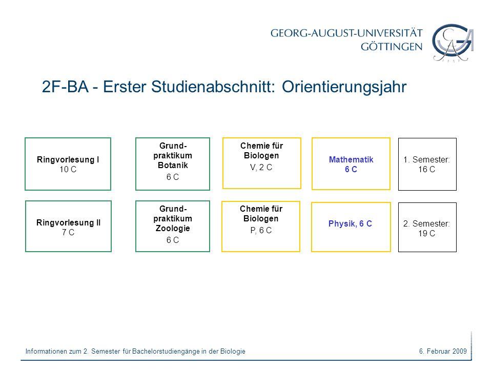 2F-BA - Erster Studienabschnitt: Orientierungsjahr