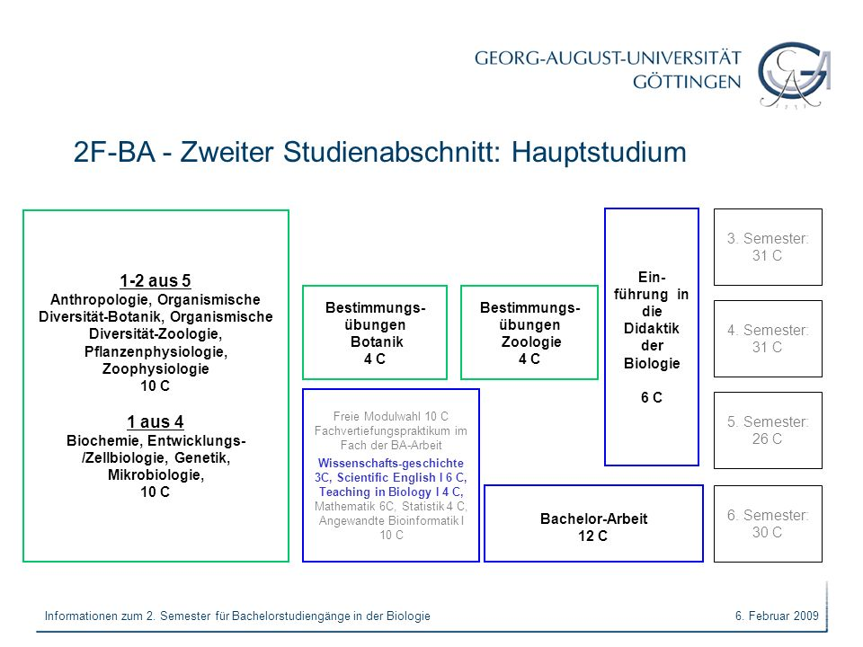2F-BA - Zweiter Studienabschnitt: Hauptstudium