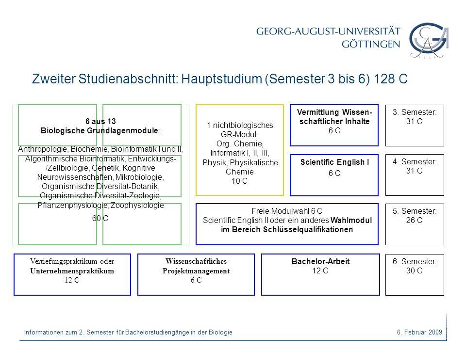Zweiter Studienabschnitt: Hauptstudium (Semester 3 bis 6) 128 C