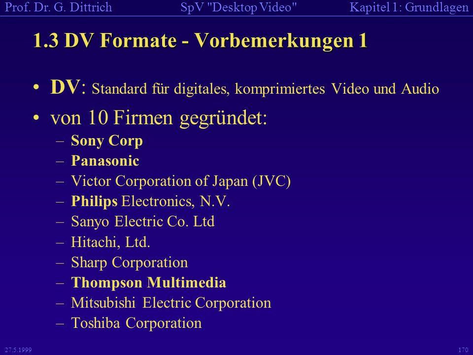 1.3 DV Formate - Vorbemerkungen 1