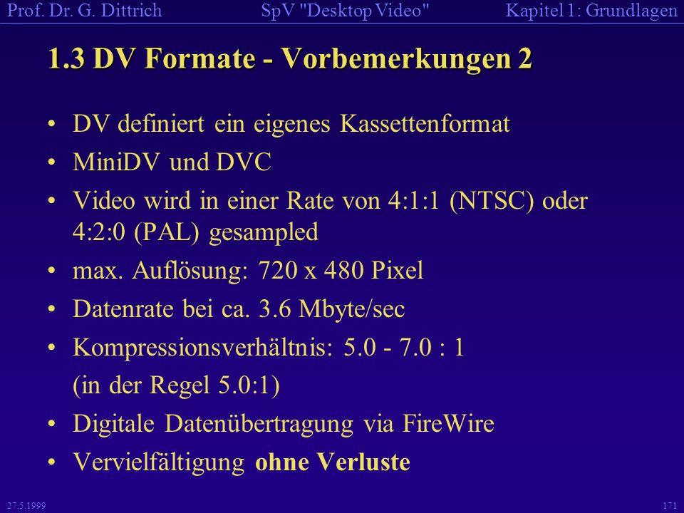 1.3 DV Formate - Vorbemerkungen 2
