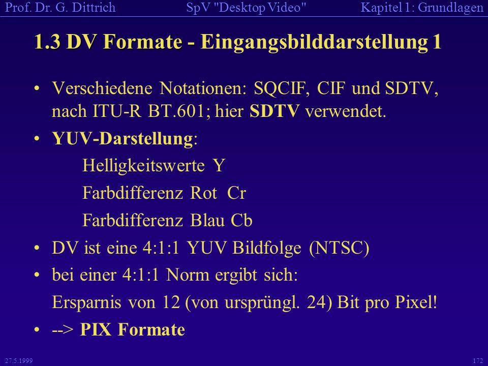 1.3 DV Formate - Eingangsbilddarstellung 1