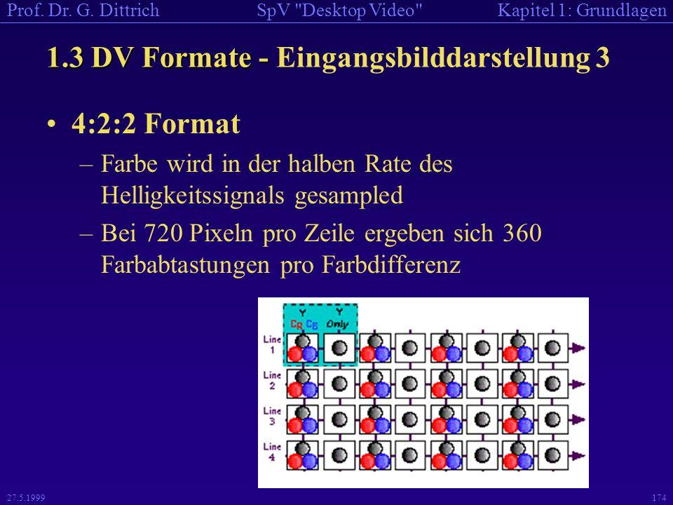 1.3 DV Formate - Eingangsbilddarstellung 3