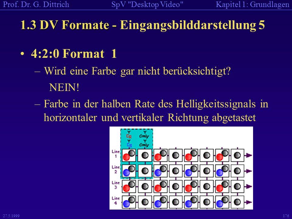 1.3 DV Formate - Eingangsbilddarstellung 5