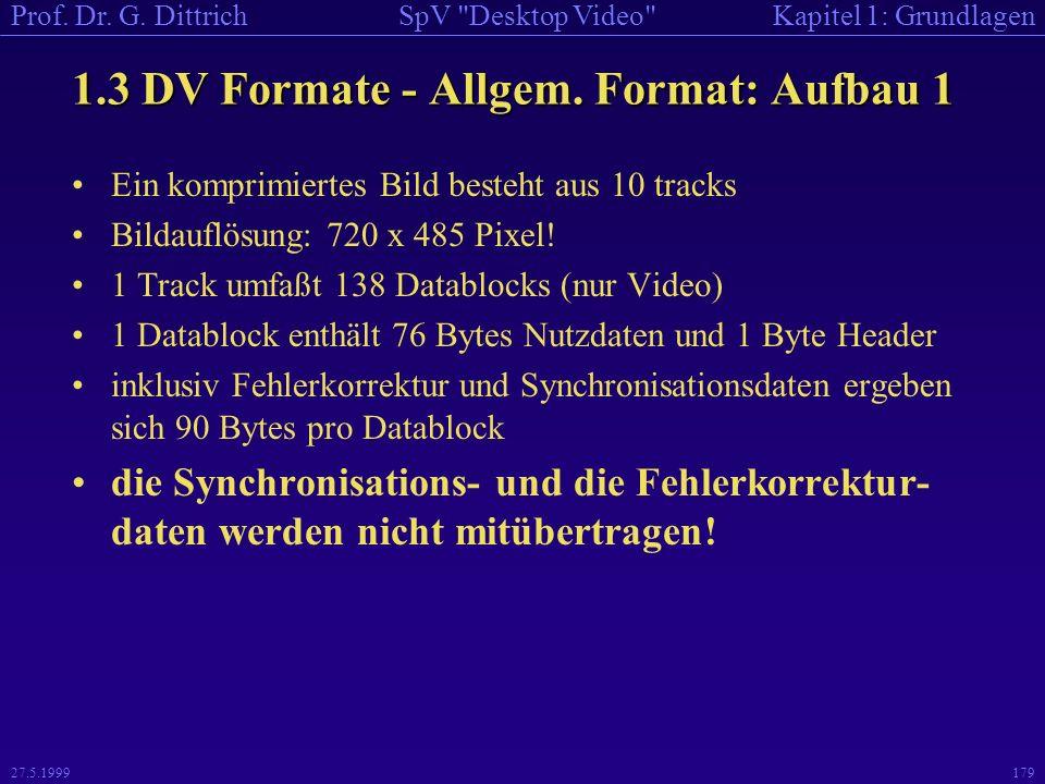 1.3 DV Formate - Allgem. Format: Aufbau 1