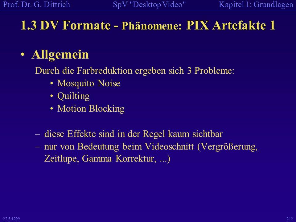 1.3 DV Formate - Phänomene: PIX Artefakte 1