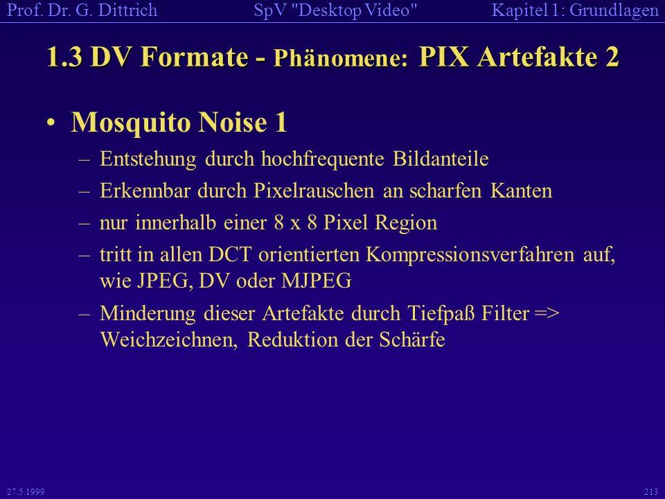 1.3 DV Formate - Phänomene: PIX Artefakte 2