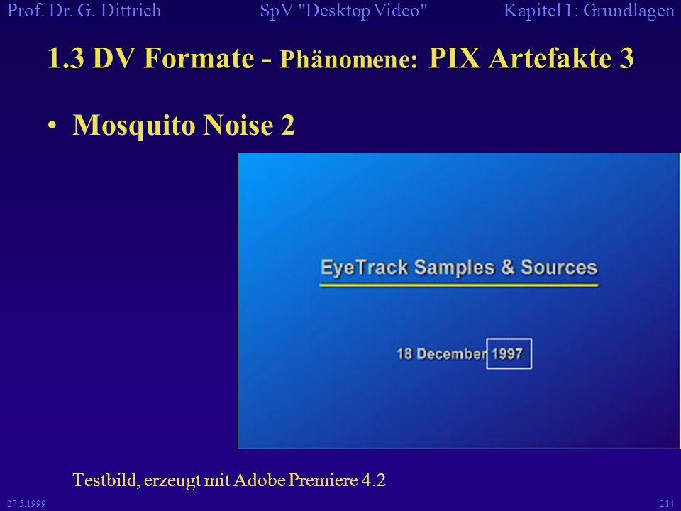 1.3 DV Formate - Phänomene: PIX Artefakte 3