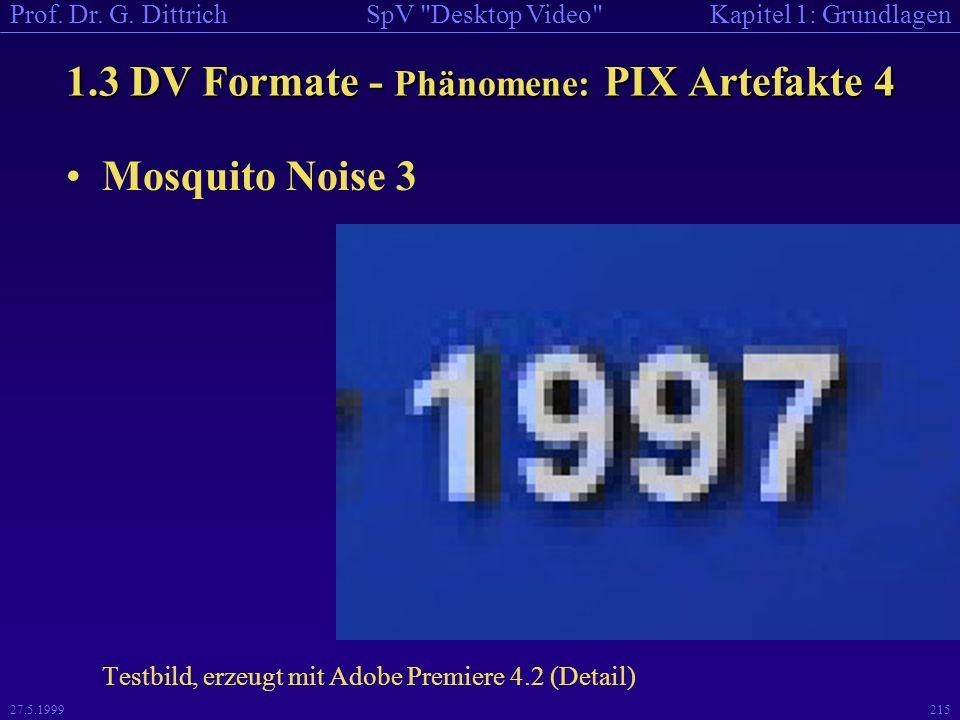 1.3 DV Formate - Phänomene: PIX Artefakte 4