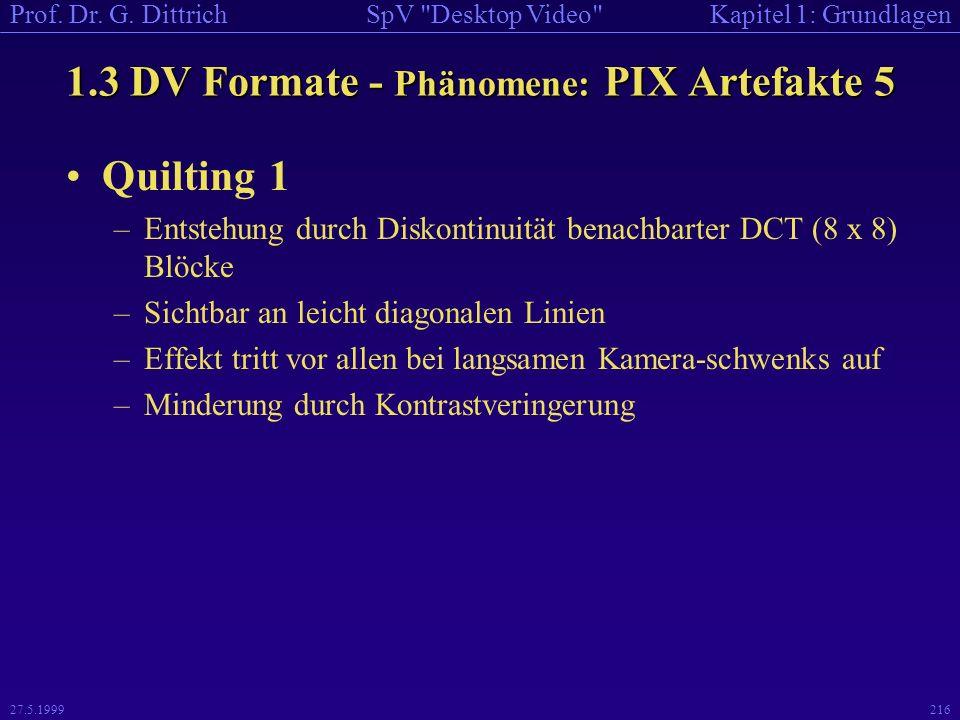 1.3 DV Formate - Phänomene: PIX Artefakte 5