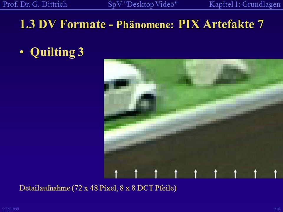1.3 DV Formate - Phänomene: PIX Artefakte 7