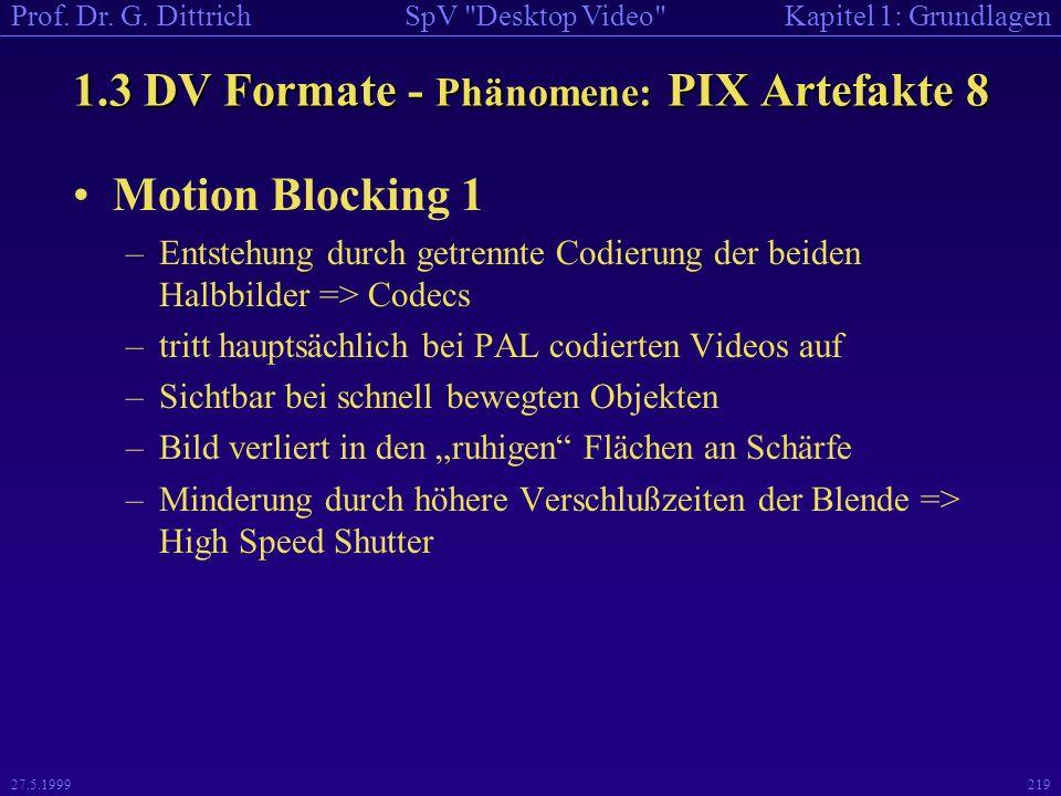 1.3 DV Formate - Phänomene: PIX Artefakte 8