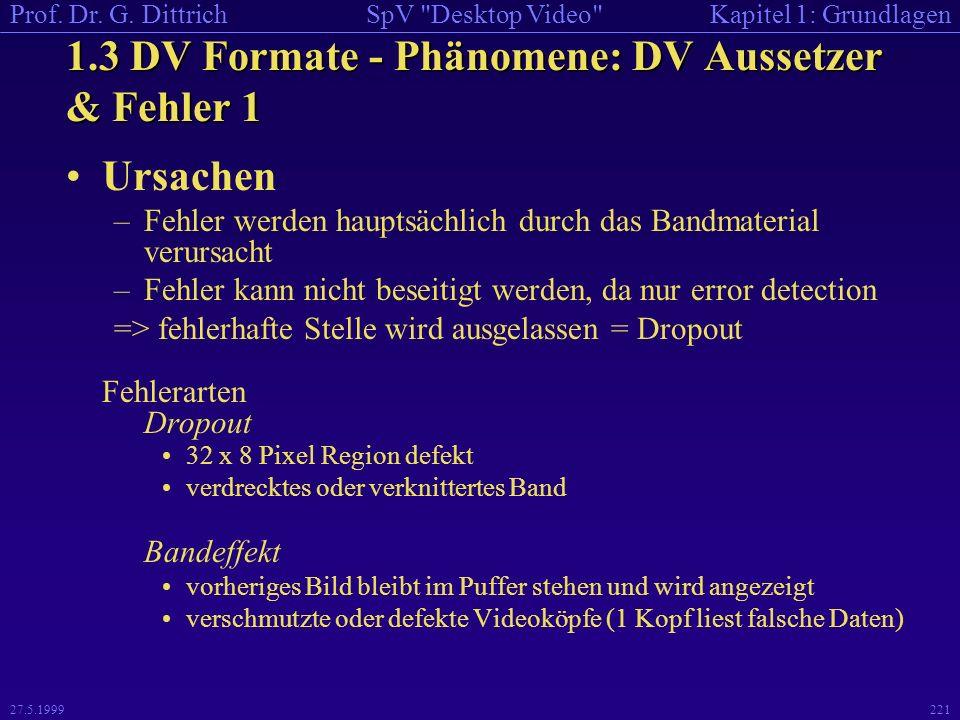 1.3 DV Formate - Phänomene: DV Aussetzer & Fehler 1