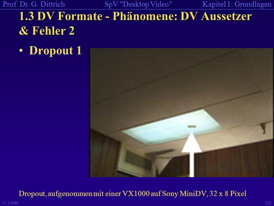 1.3 DV Formate - Phänomene: DV Aussetzer & Fehler 2