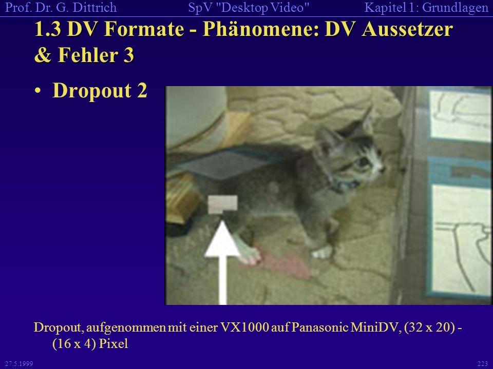 1.3 DV Formate - Phänomene: DV Aussetzer & Fehler 3