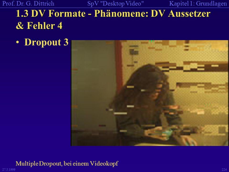 1.3 DV Formate - Phänomene: DV Aussetzer & Fehler 4