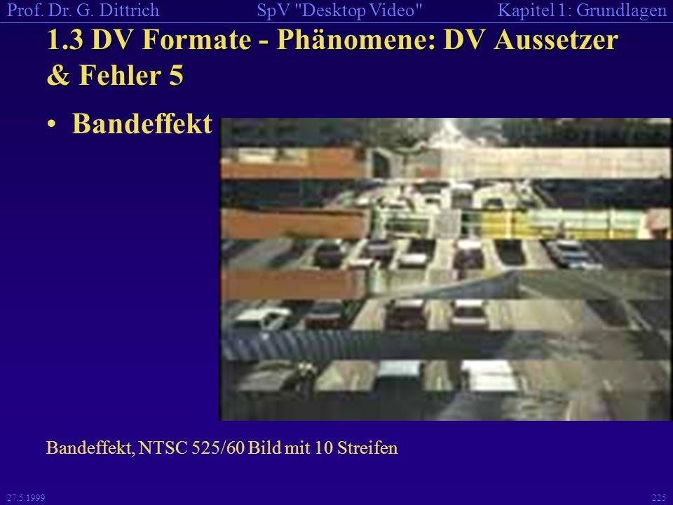1.3 DV Formate - Phänomene: DV Aussetzer & Fehler 5