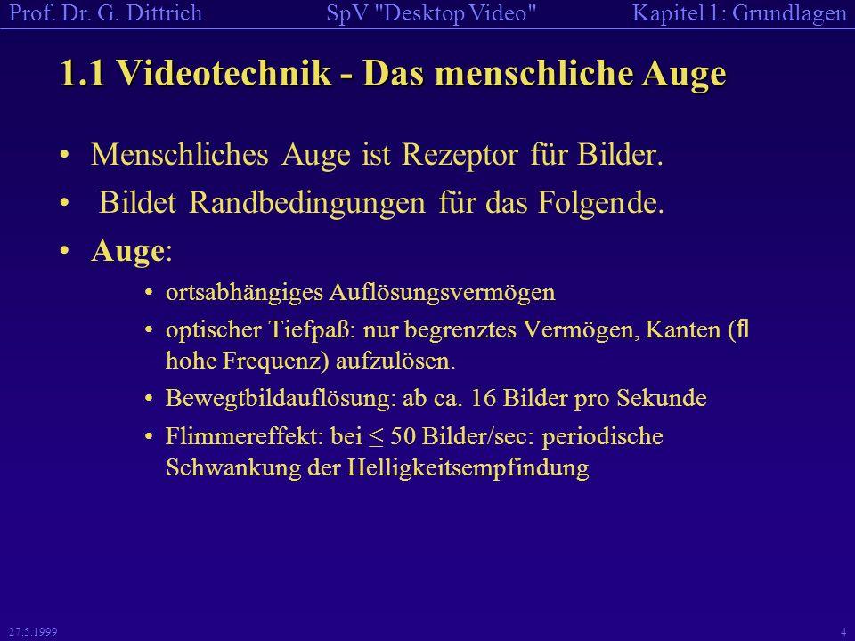 1.1 Videotechnik - Das menschliche Auge